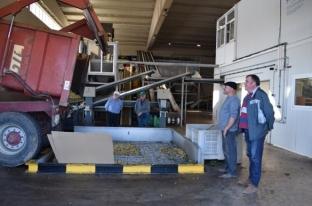 Visita de expertos en biomasa